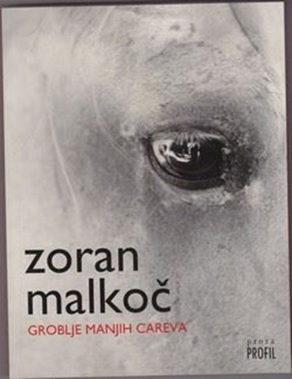 Picture of Zoran Malkoc: Groblje manjih careva