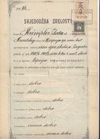 Picture of Oton Kučera i ostali, potpis: Svjedoždba zrelosti