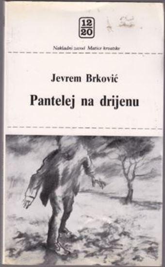 Picture of Jevrem Brkovic: Pantelej na Drijenu
