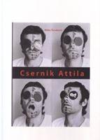 Picture of Misko Suvakovic: Csernik Attila