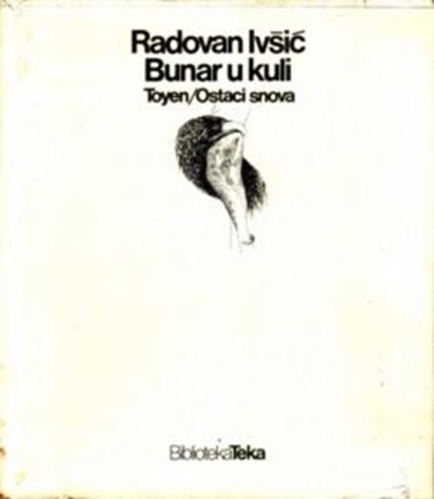 Picture of Radovan Ivšić / Toyen: Bunar u kuli / Ostaci snova