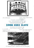 Picture of Vladimir Gudac: Zidom kroz glavu