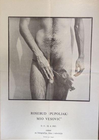 Picture of Mio Vesović: Rosebud (pupoljak)