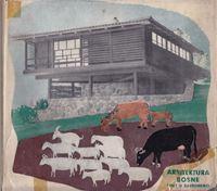 Picture of Arhitektura Bosne i put u suvremeno