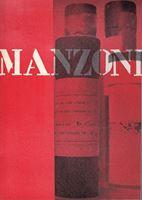 Picture of Piero Manzoni: The lines